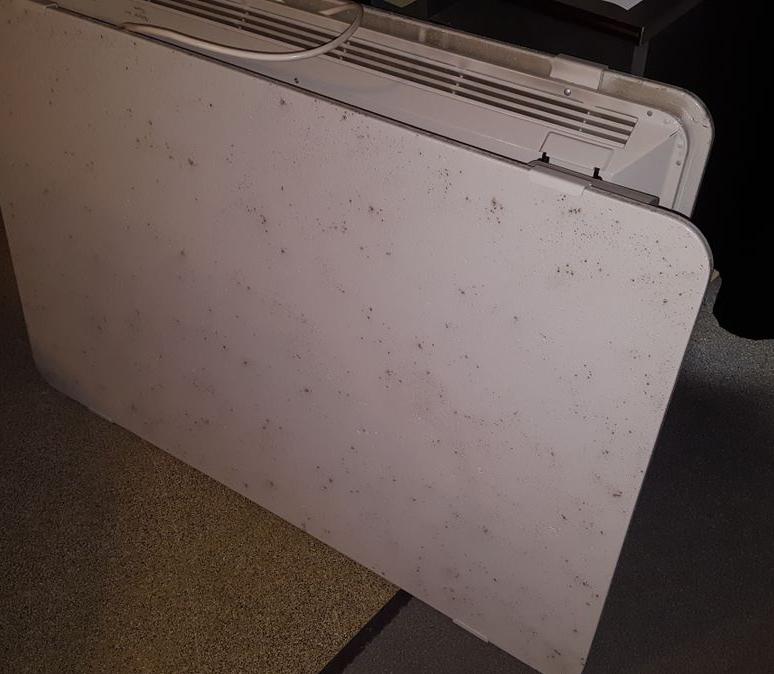 Deux radiateurs Campa Lave en réparation