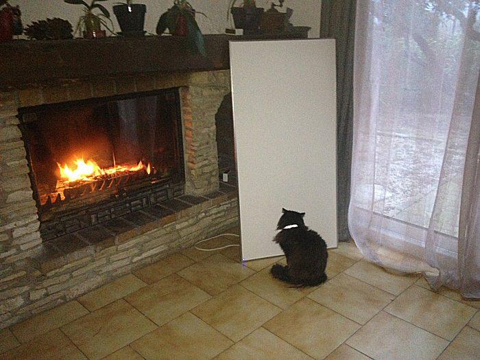 !Un chat au chaud